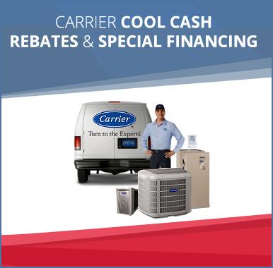 carol flynn special offer 1